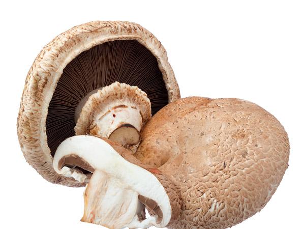 波多黎各菌Portobello8-10cm